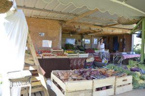 un marché à la ferme début d'automne